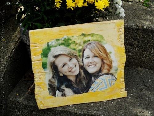 Custom Portrait: Cheryl's Daughters by AmandaFormaro.com